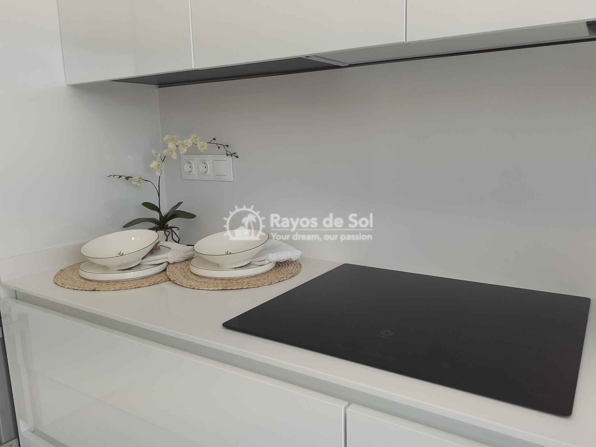 Stunning apartment  in Benidorm, Costa Blanca (Benidormb 33D) - 15