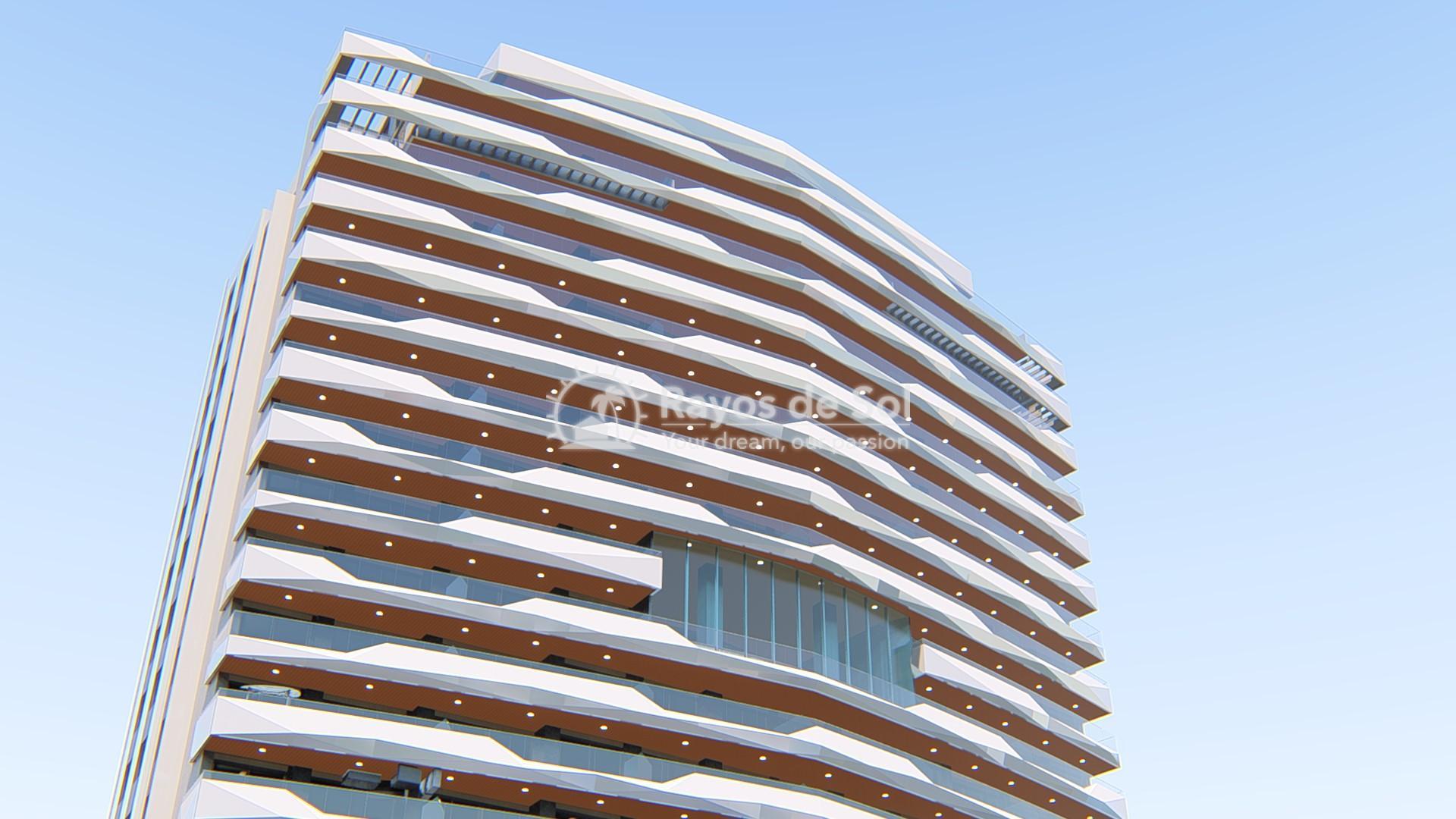 Penthouse 35th floor  in Benidorm, Costa Blanca (Benidormb 35F) - 35