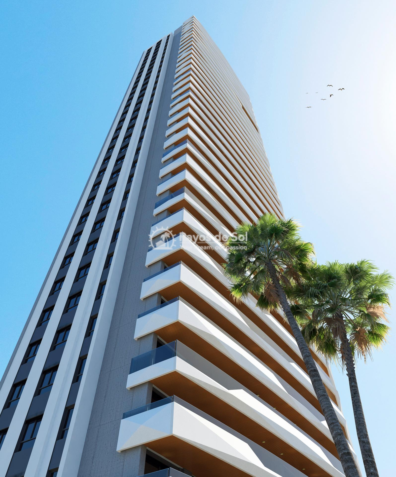 Penthouse 35th floor  in Benidorm, Costa Blanca (Benidormb 35F) - 33