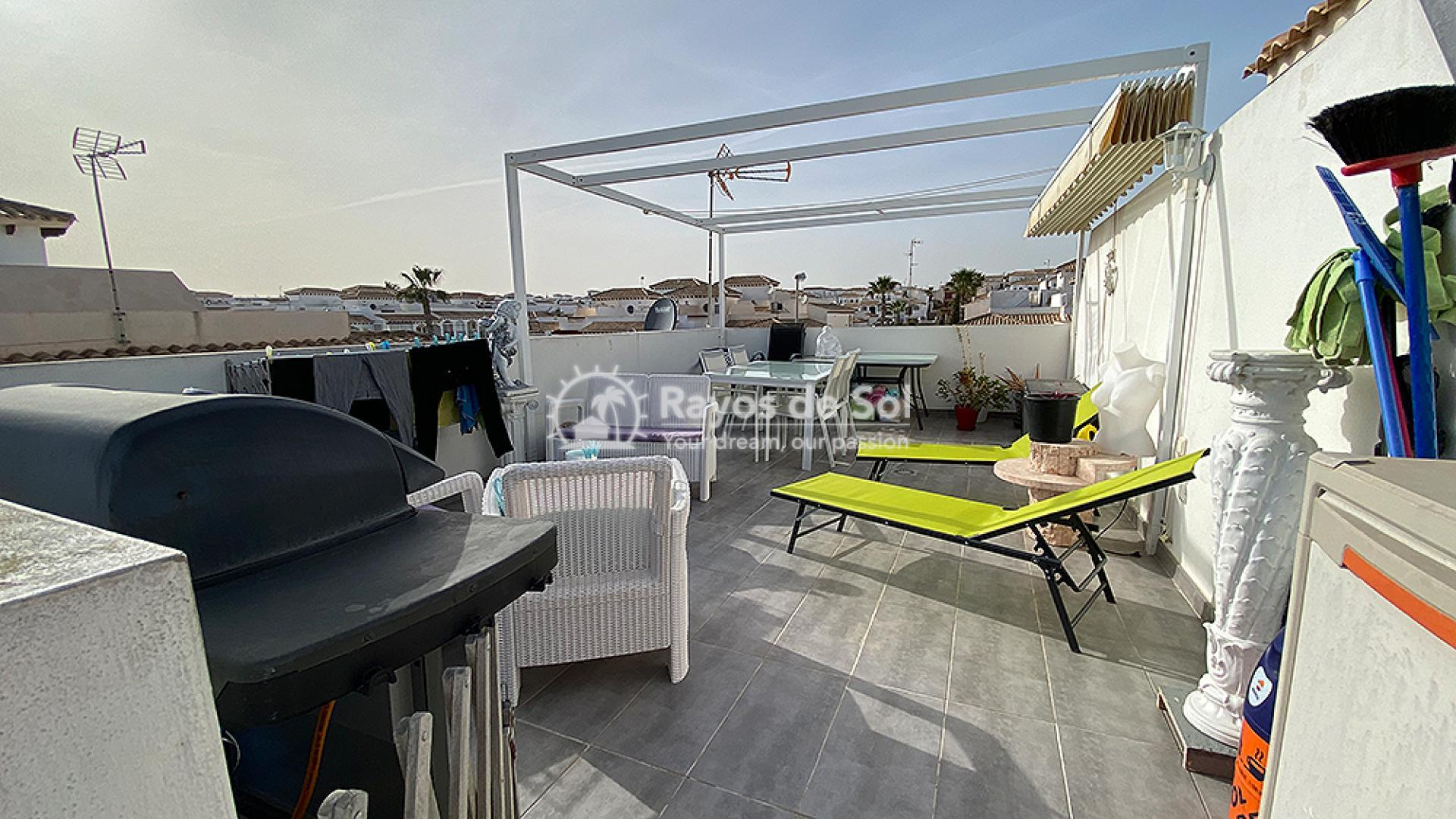 Apartment  in Punta Prima, Orihuela Costa, Costa Blanca (mp484) - 14