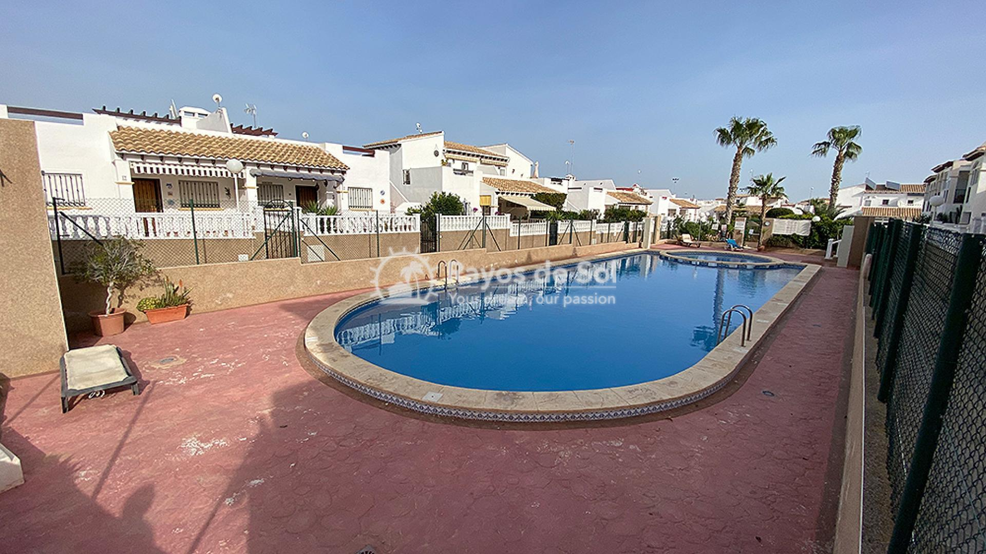 Apartment  in Punta Prima, Orihuela Costa, Costa Blanca (mp484) - 17
