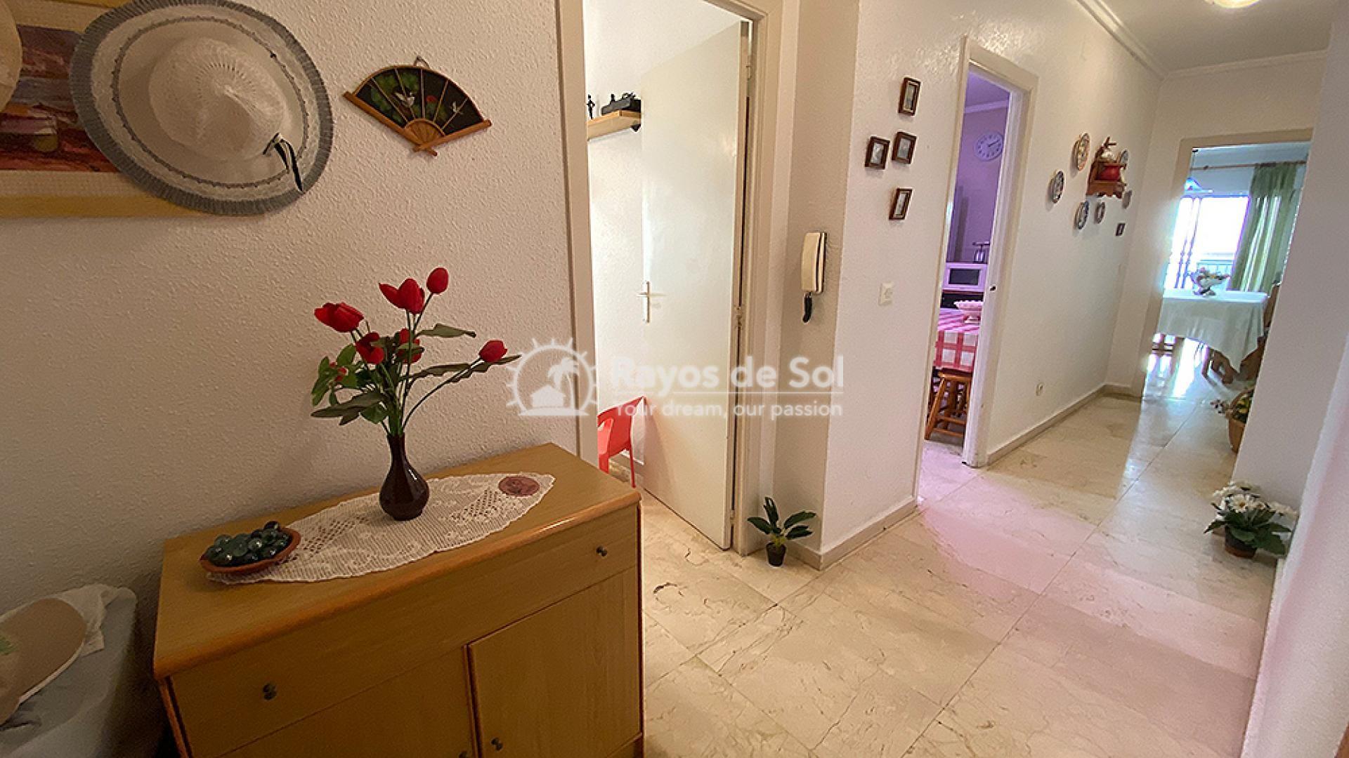 Apartment  in Torrevieja, Costa Blanca (mp2049) - 3