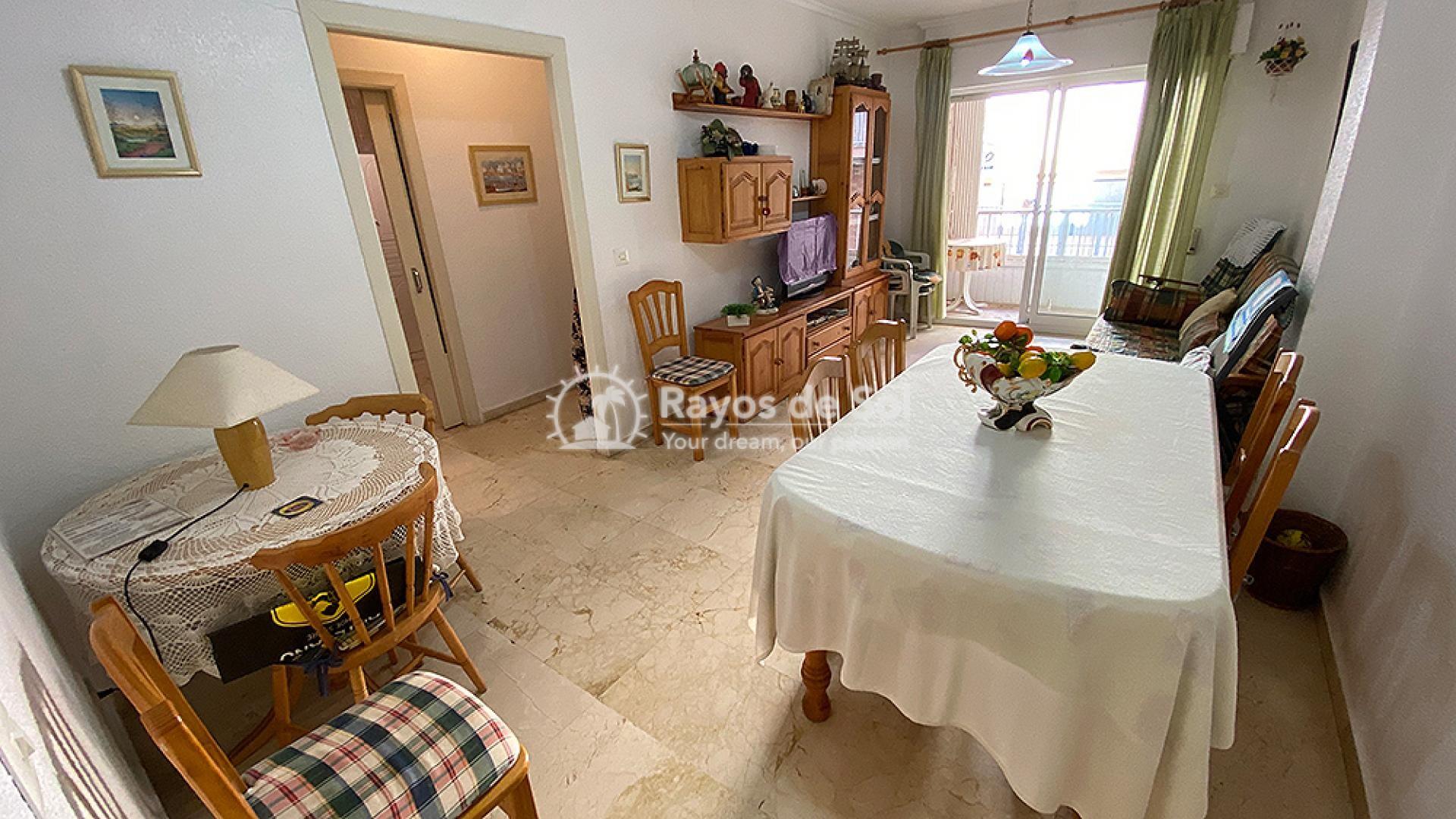 Apartment  in Torrevieja, Costa Blanca (mp2049) - 4
