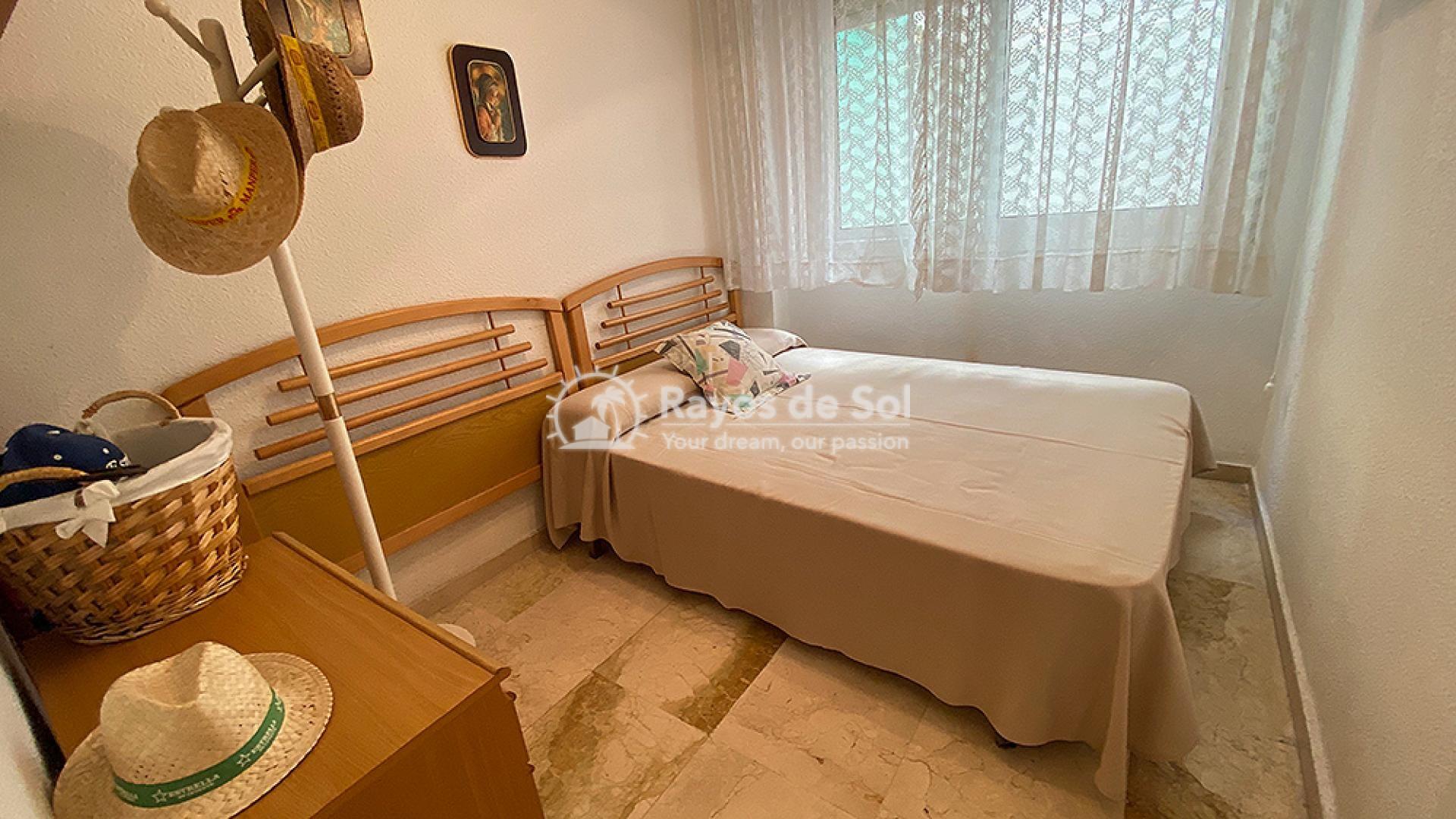 Apartment  in Torrevieja, Costa Blanca (mp2049) - 16