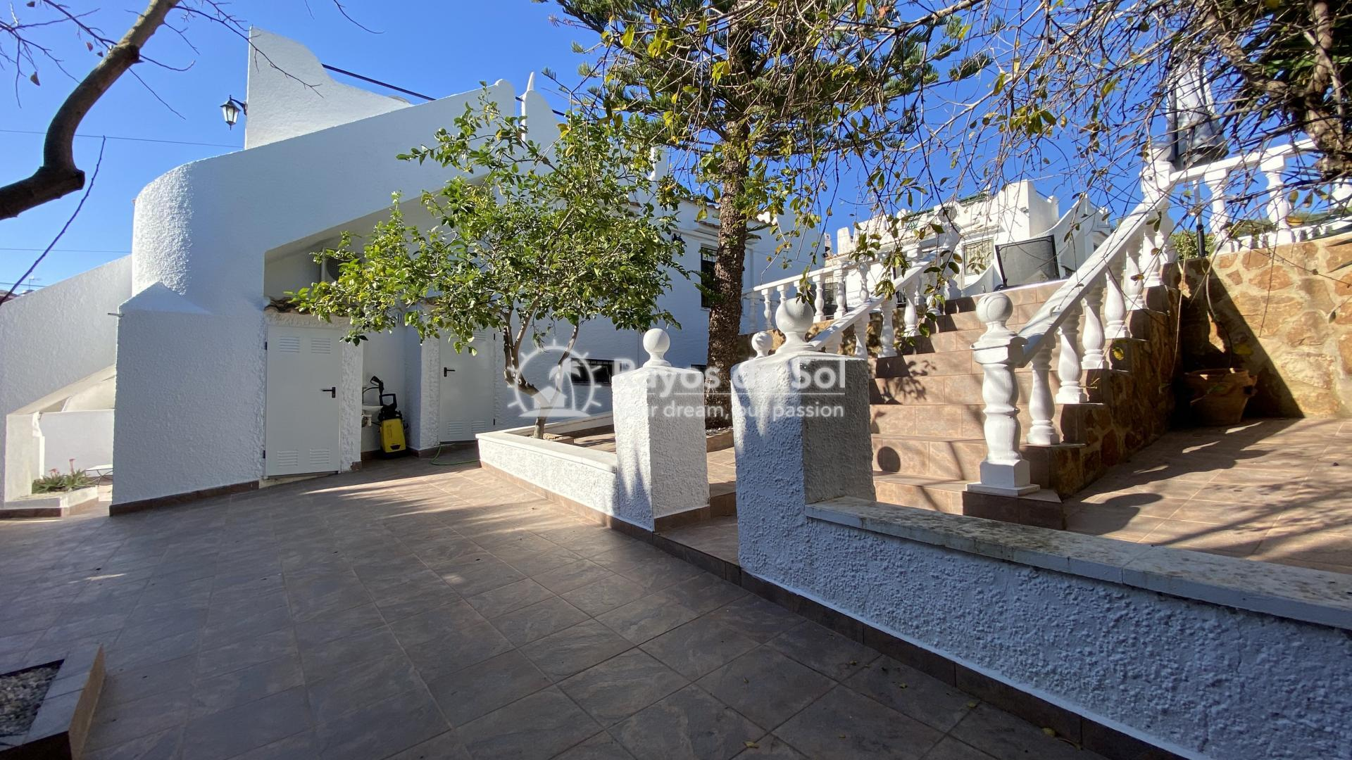 Villa  in Torrevieja, Costa Blanca (mp796) - 21