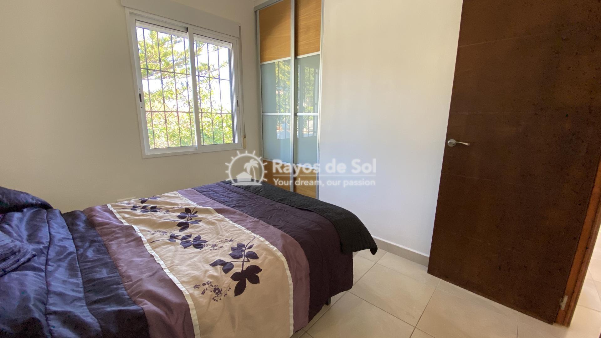 Villa  in Torrevieja, Costa Blanca (mp796) - 33