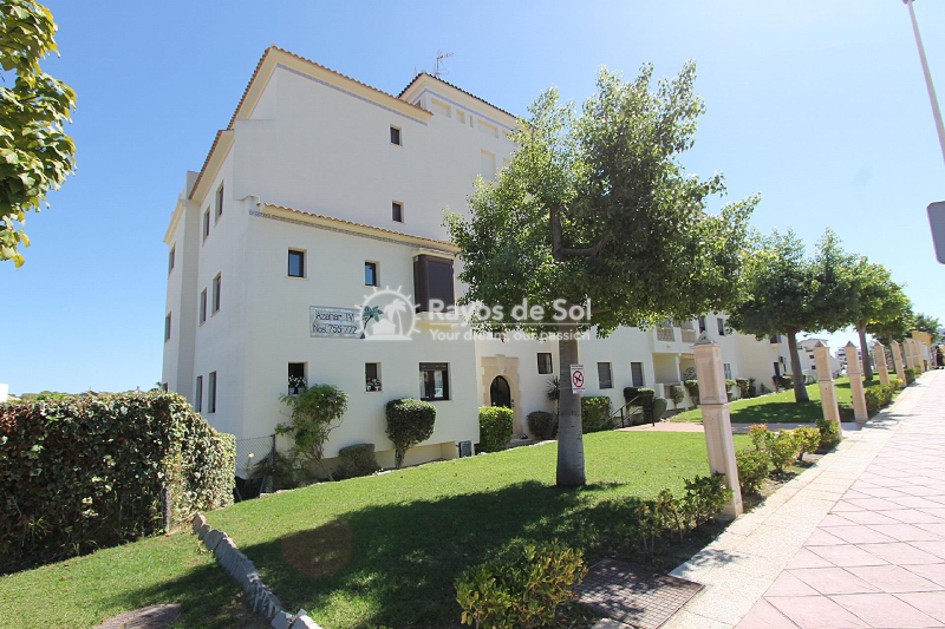 Apartment  in Orihuela Costa, Costa Blanca (mp2044) - 1