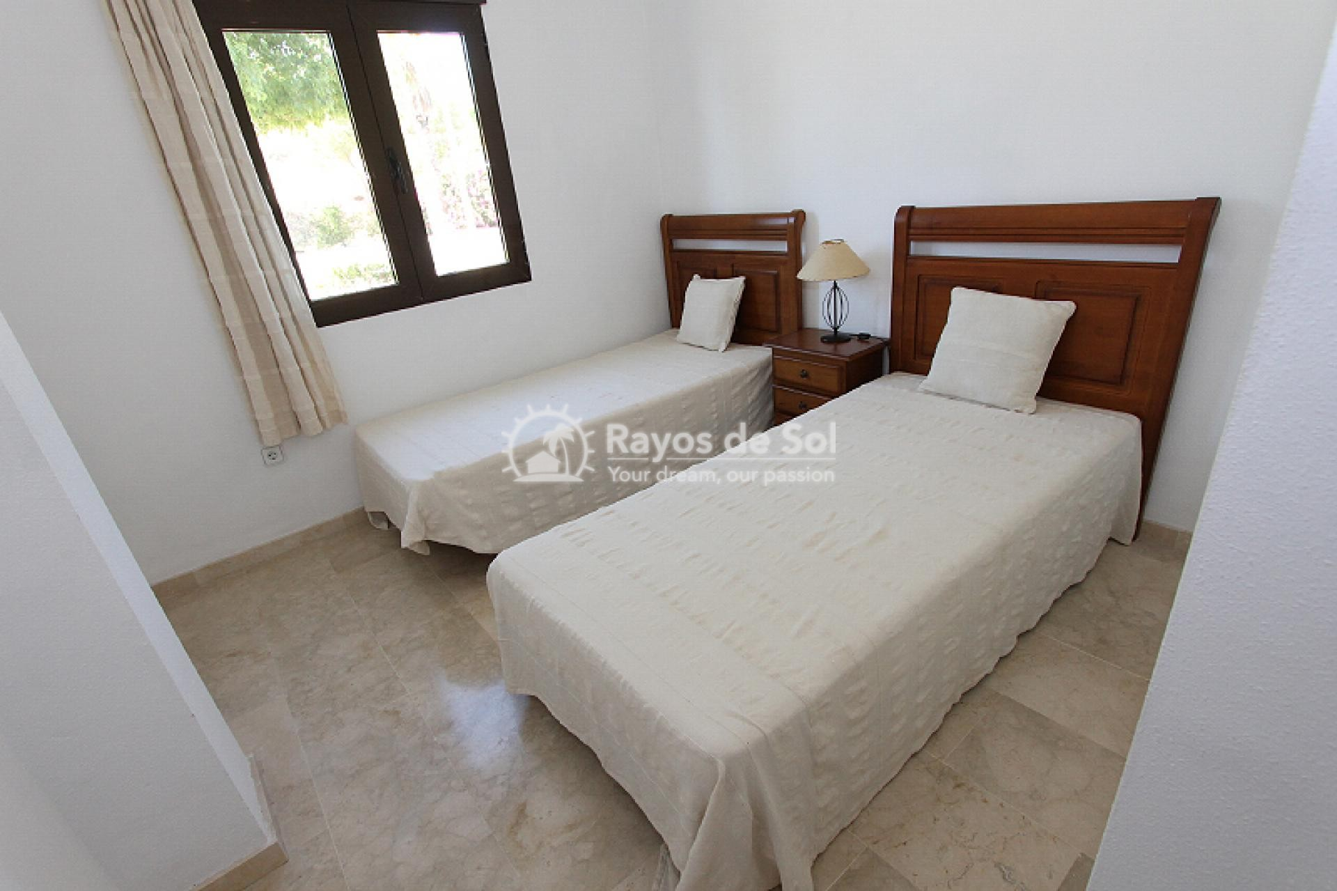 Apartment  in Orihuela Costa, Costa Blanca (mp2044) - 13