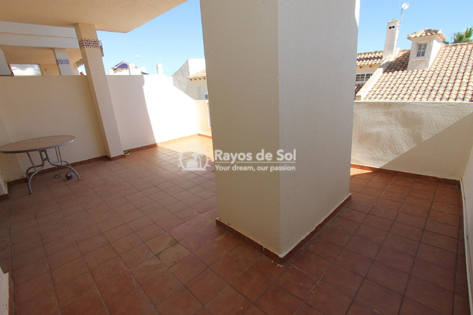 Apartment  in Orihuela Costa, Costa Blanca (mp2044) - 20