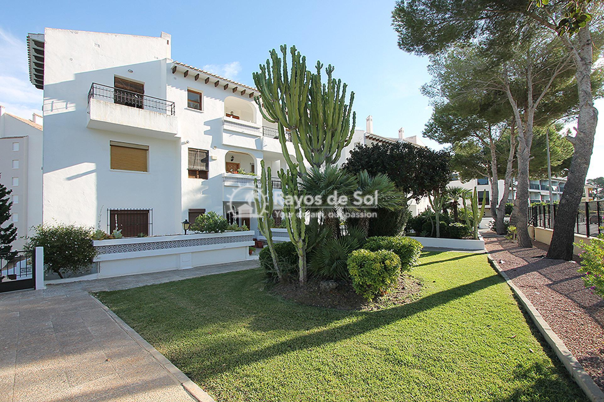Apartment  in Campoamor, Orihuela Costa, Costa Blanca (mp2037) - 2