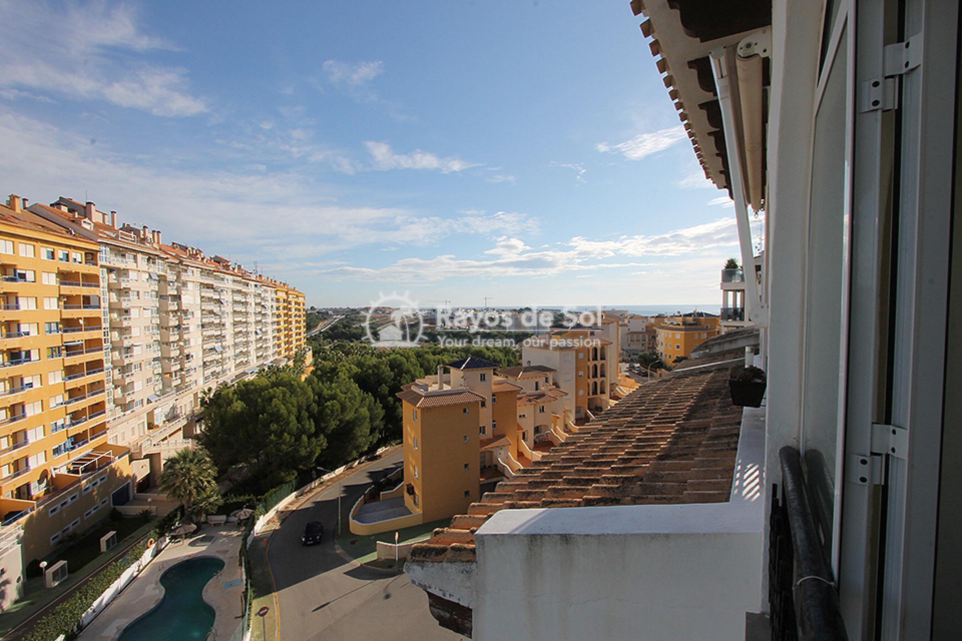 Apartment  in Campoamor, Orihuela Costa, Costa Blanca (mp2037) - 14