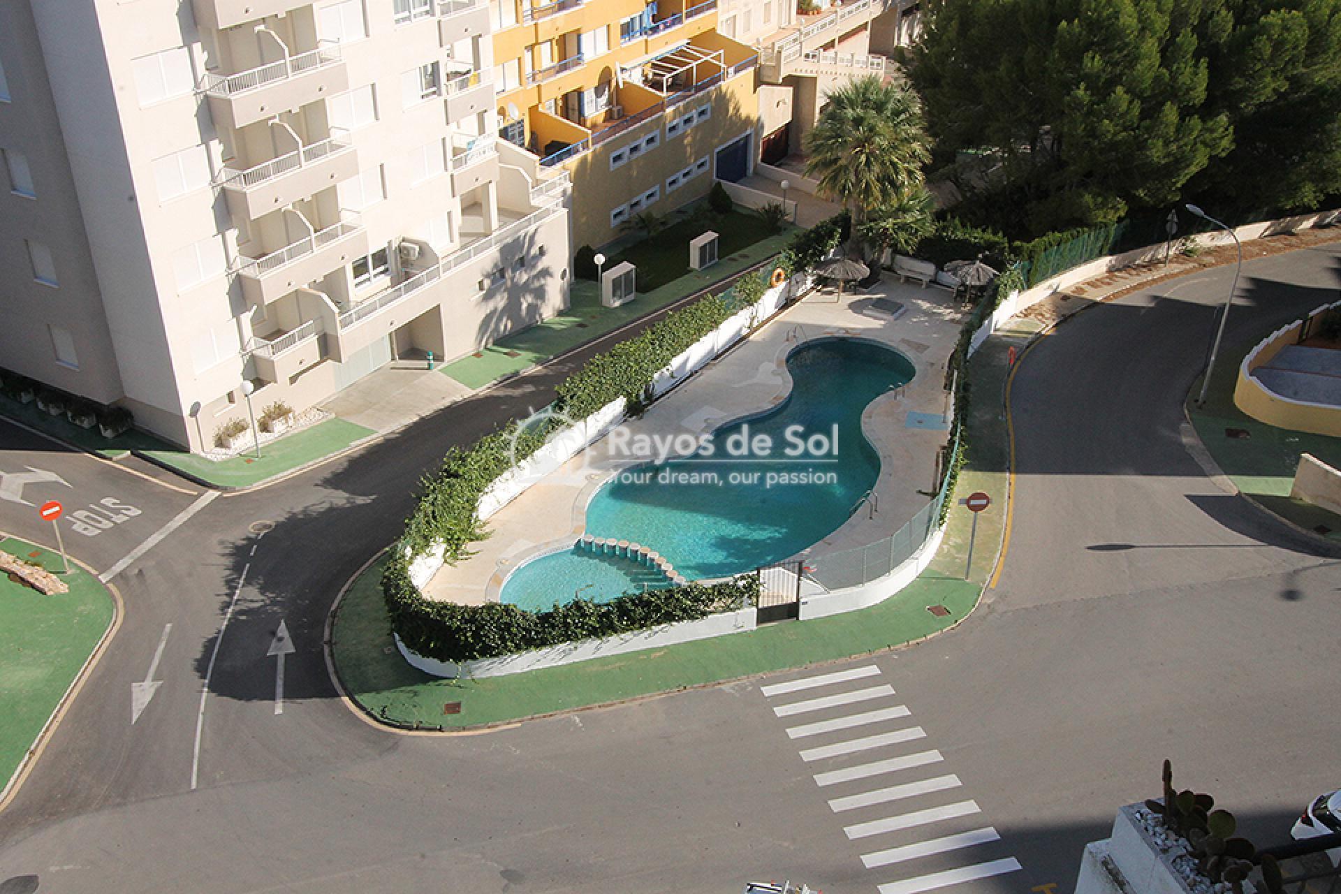 Apartment  in Campoamor, Orihuela Costa, Costa Blanca (mp2037) - 15