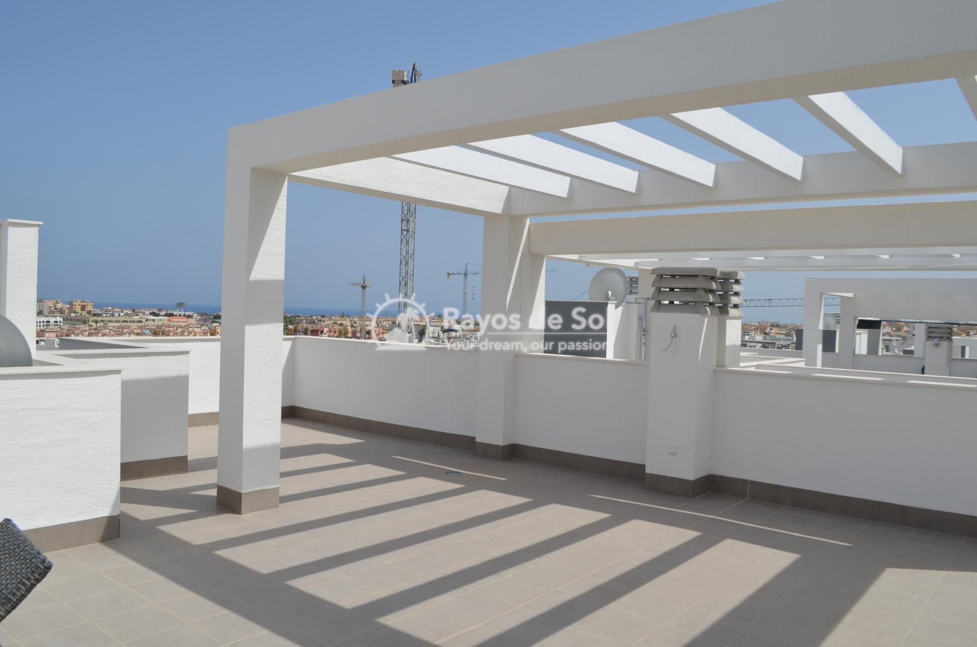 Apartment  in Punta Prima, Orihuela Costa, Costa Blanca (mp2028) - 15