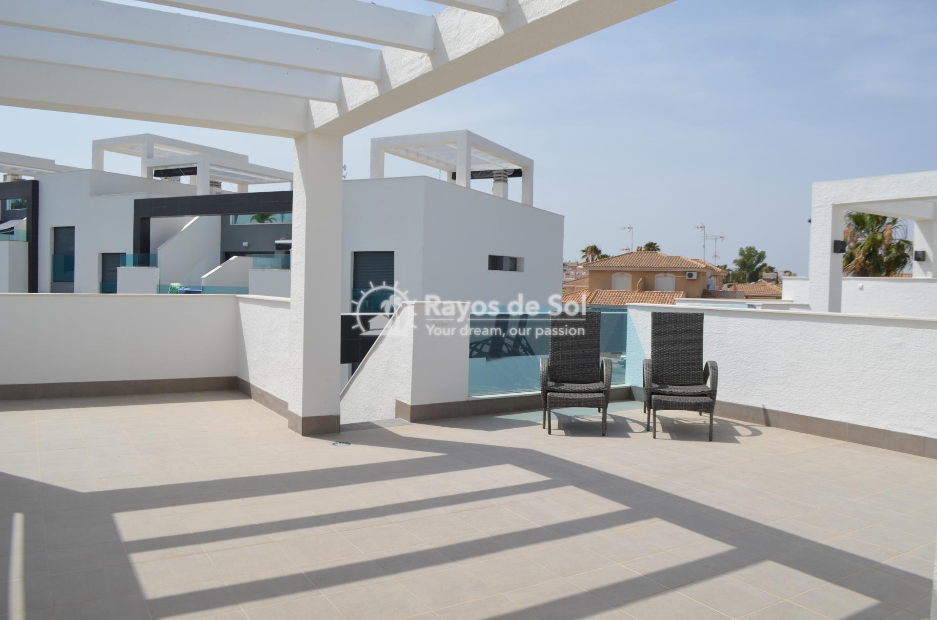 Apartment  in Punta Prima, Orihuela Costa, Costa Blanca (mp2028) - 16