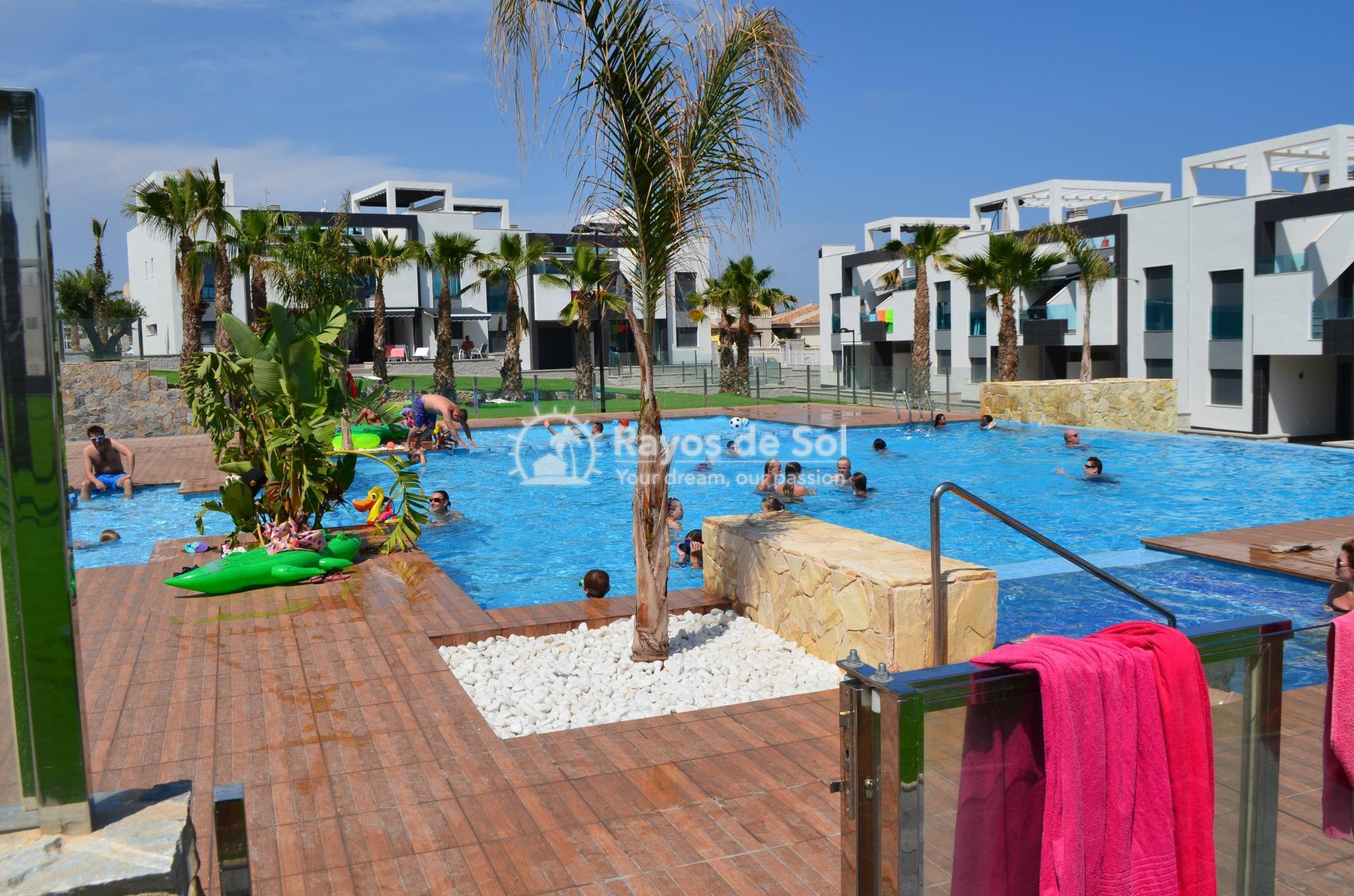 Apartment  in Punta Prima, Orihuela Costa, Costa Blanca (mp477) - 1