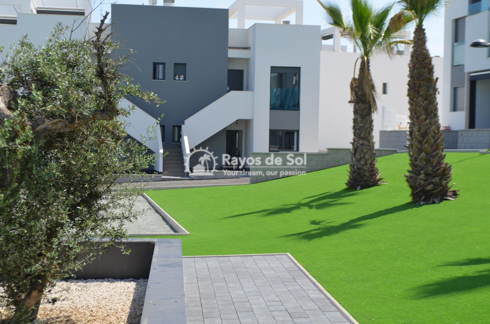 Apartment  in Punta Prima, Orihuela Costa, Costa Blanca (mp477) - 2