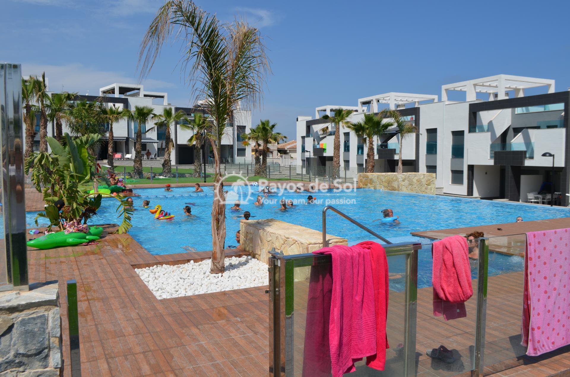 Apartment  in Punta Prima, Orihuela Costa, Costa Blanca (mp477) - 28