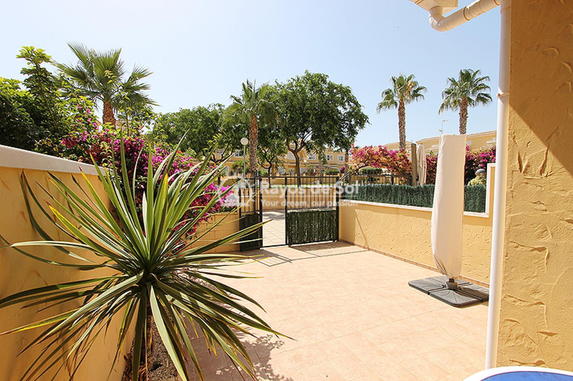Townhouse  in Torrevieja, Costa Blanca (mp582) - 5