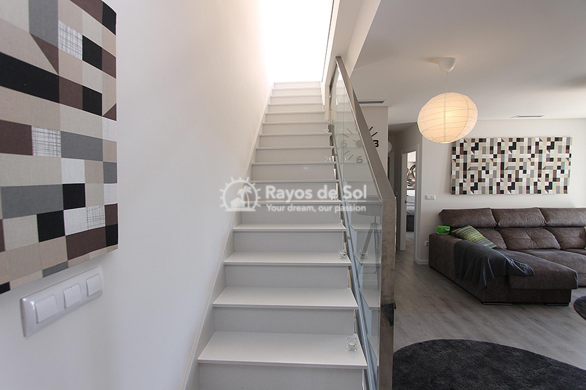 Apartment  in Orihuela Costa, Costa Blanca (mp2014) - 25