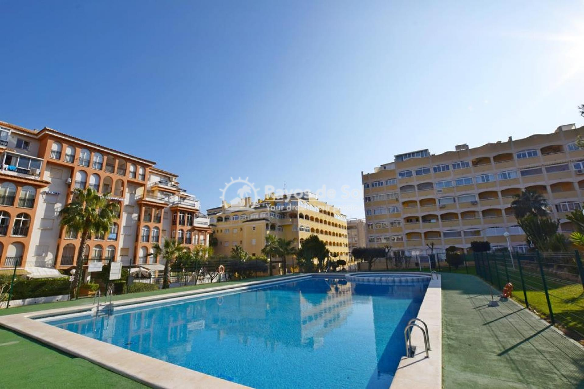 Apartment  in Torrevieja, Costa Blanca (mp9071) - 17