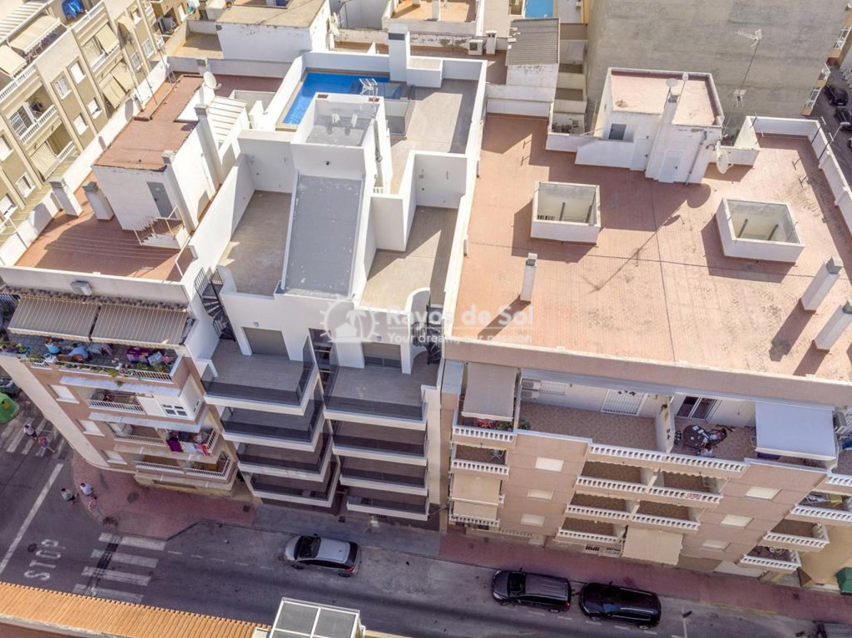 Apartment  in Torrevieja, Costa Blanca (mp9069) - 24