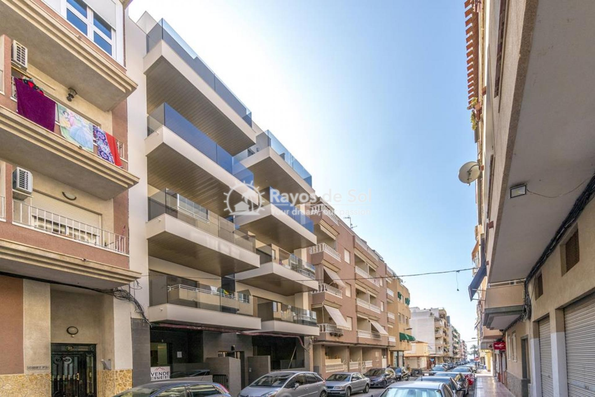 Apartment  in Torrevieja, Costa Blanca (mp9069) - 27