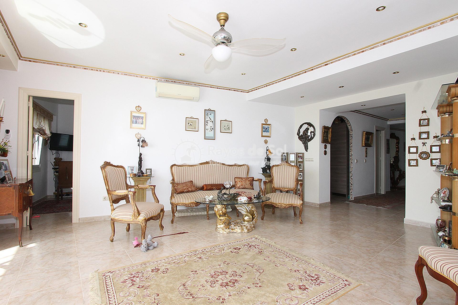 Apartment  in Torrevieja, Costa Blanca (mp259) - 9