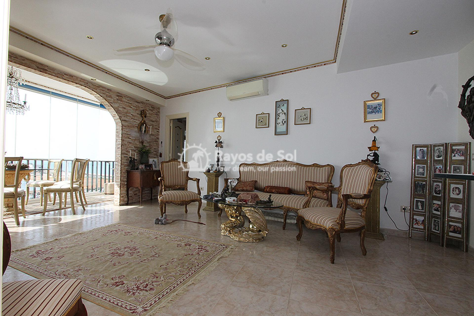 Apartment  in Torrevieja, Costa Blanca (mp259) - 11