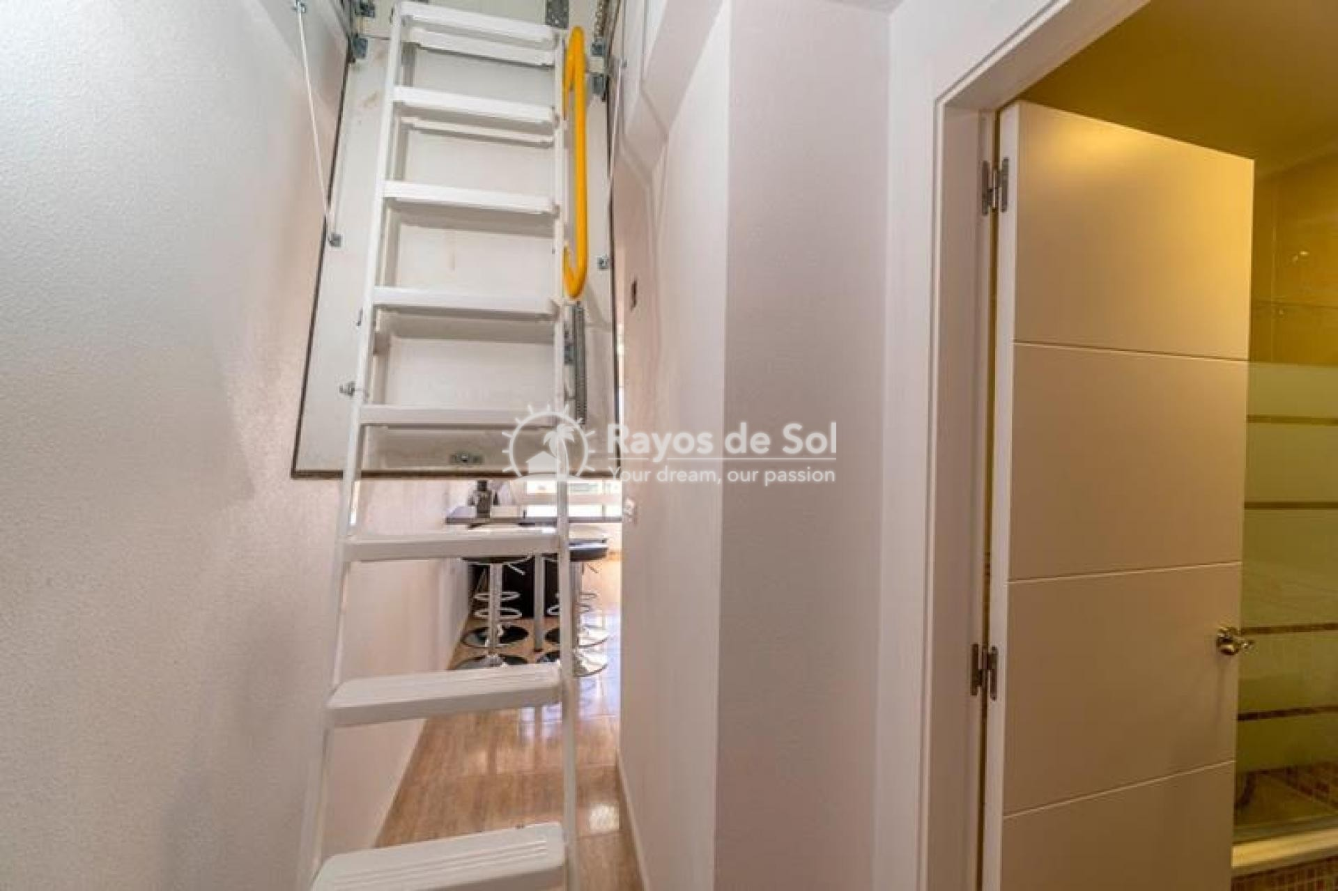 Apartment  in Torrevieja, Costa Blanca (mp9038) - 8