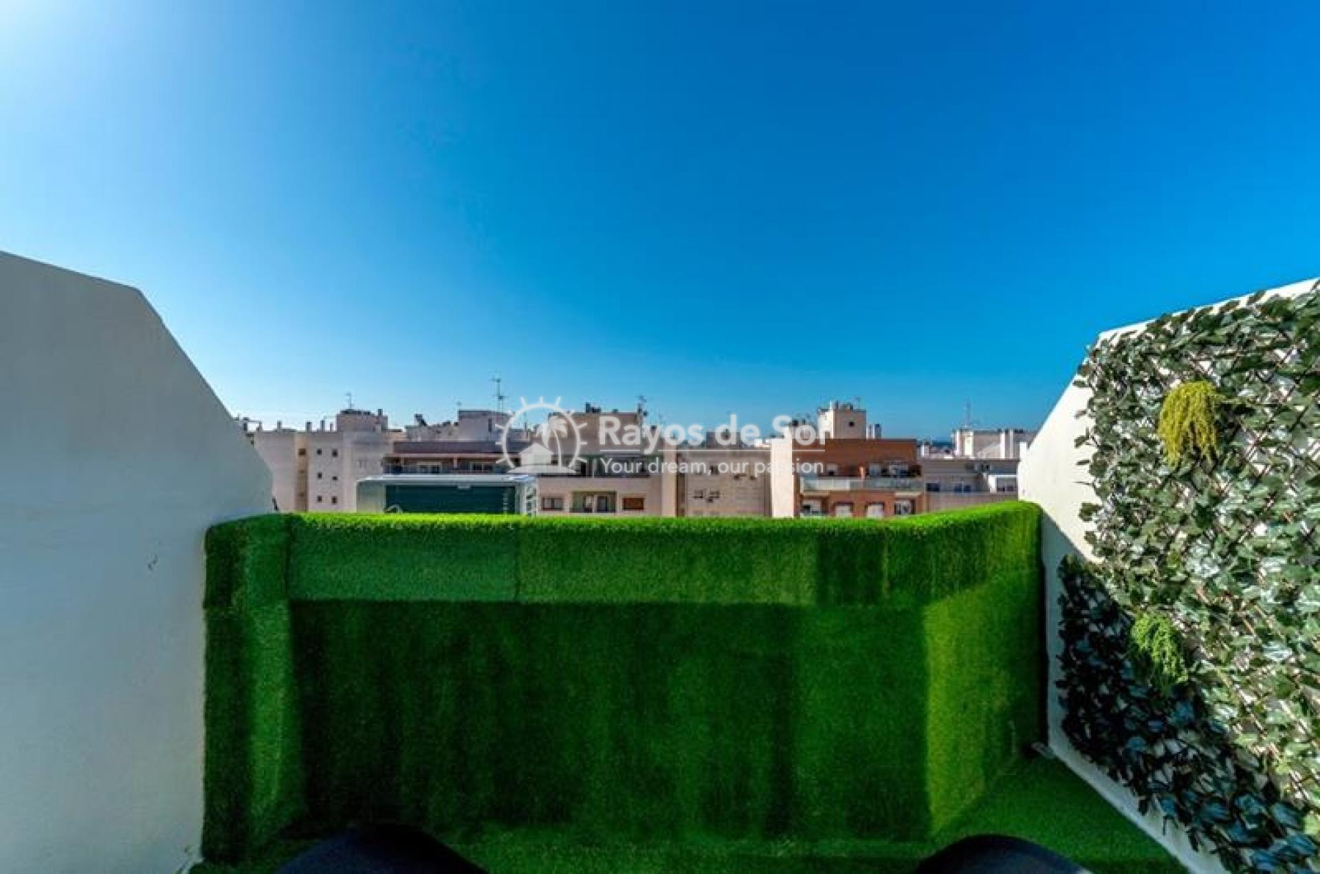 Apartment  in Torrevieja, Costa Blanca (mp9037) - 25
