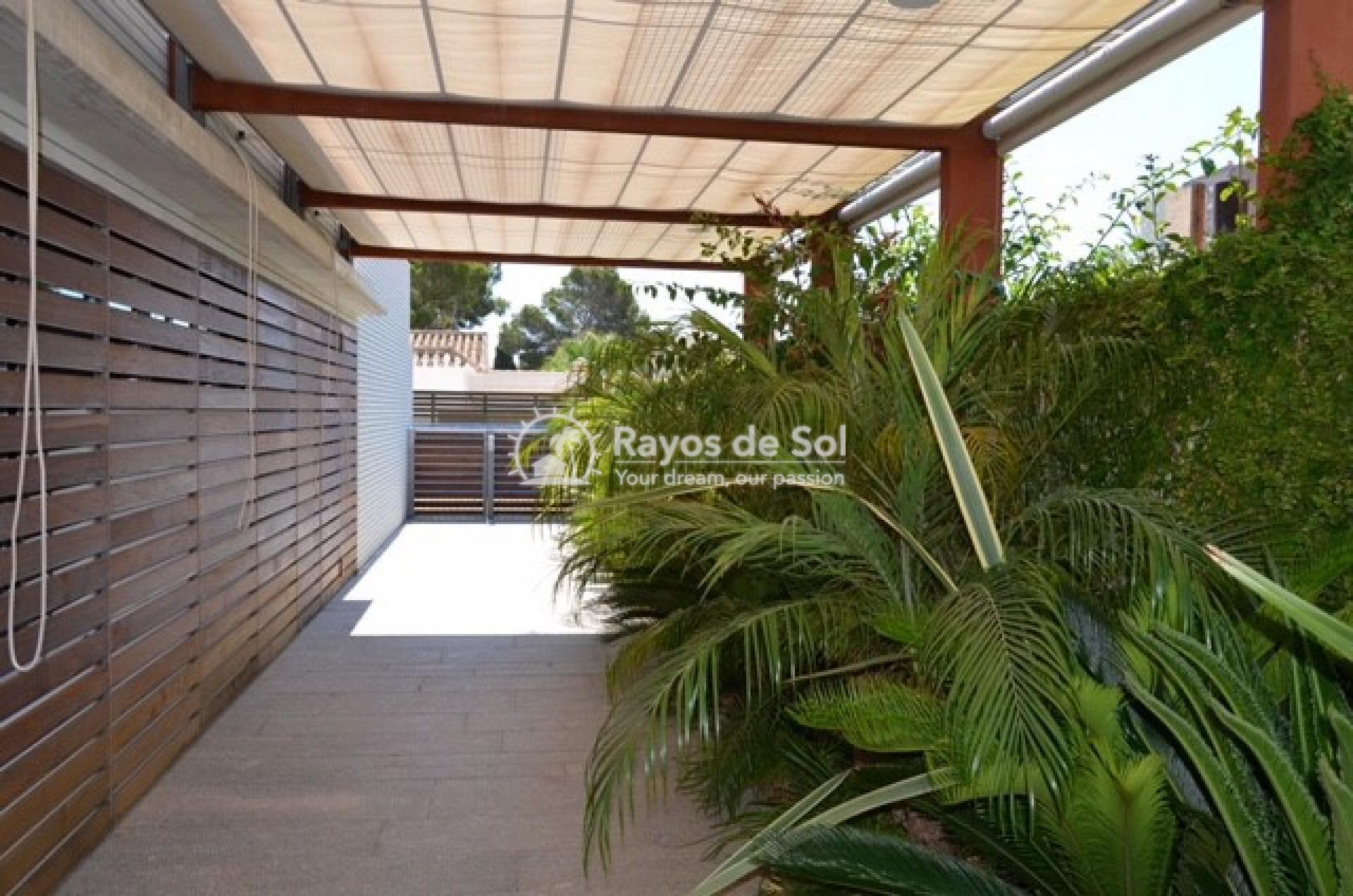 Villa  in Campoamor, Orihuela Costa, Costa Blanca (mp730) - 8
