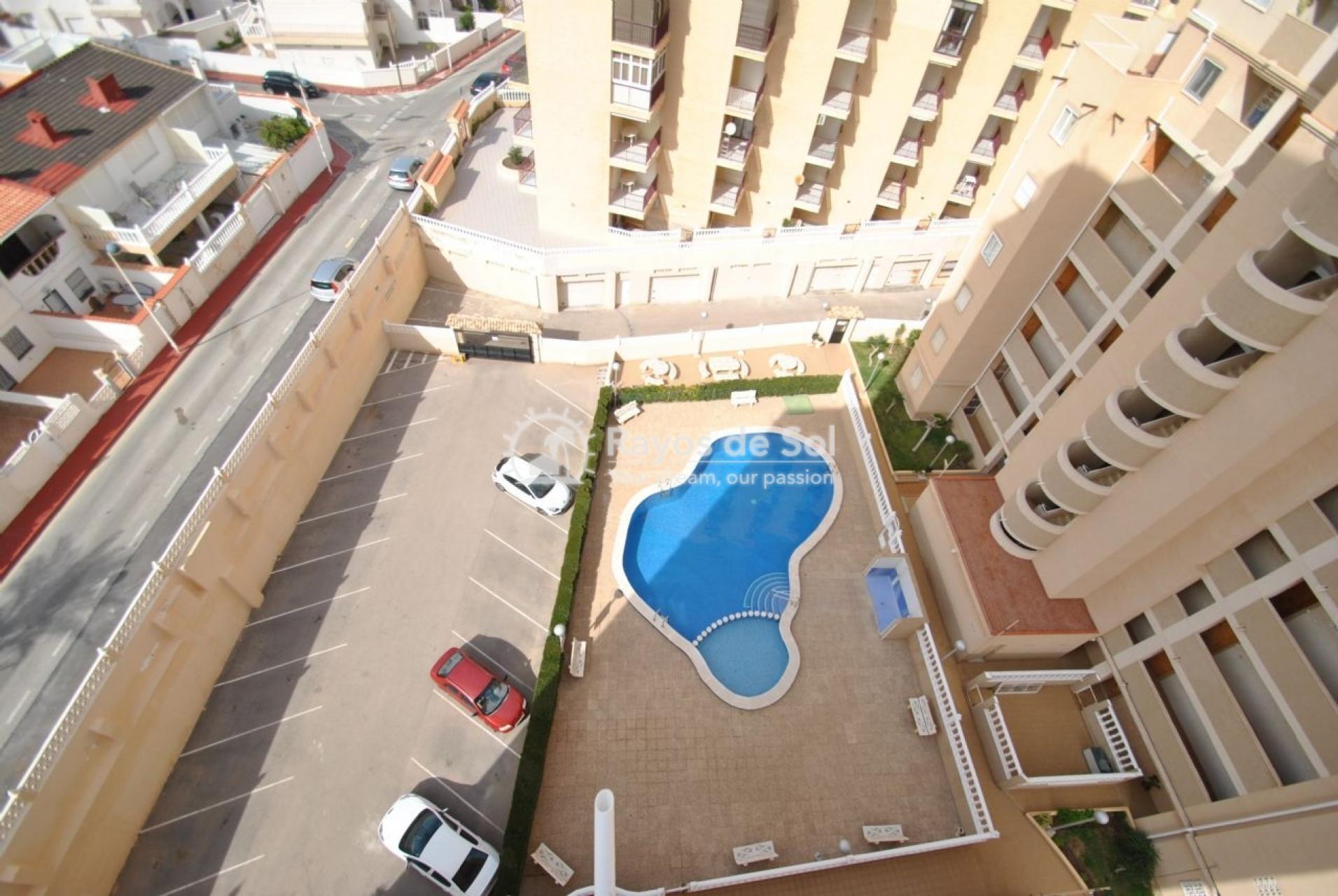 Apartment  in La Mata, Costa Blanca (mp244) - 16