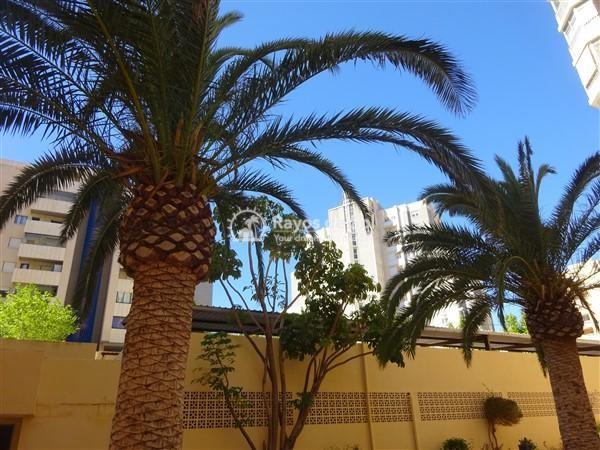 Apartment  in Calpe, Costa Blanca North (2922) - 6