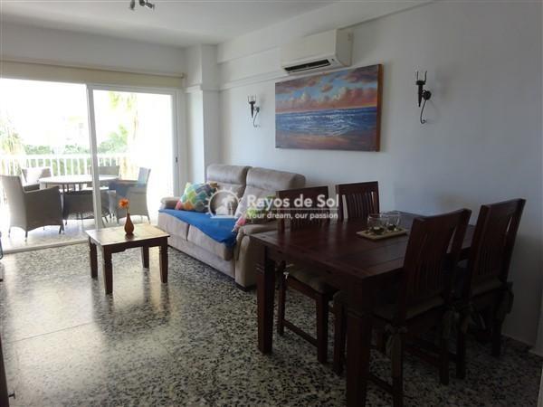 Apartment  in Calpe, Costa Blanca North (2922) - 19