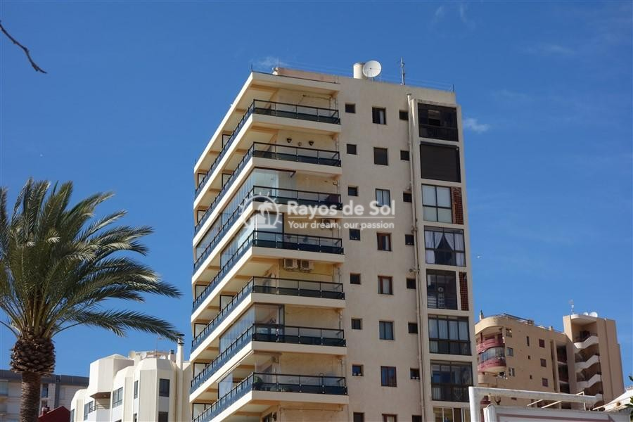 Apartment  in Calpe, Costa Blanca North (2911) - 14
