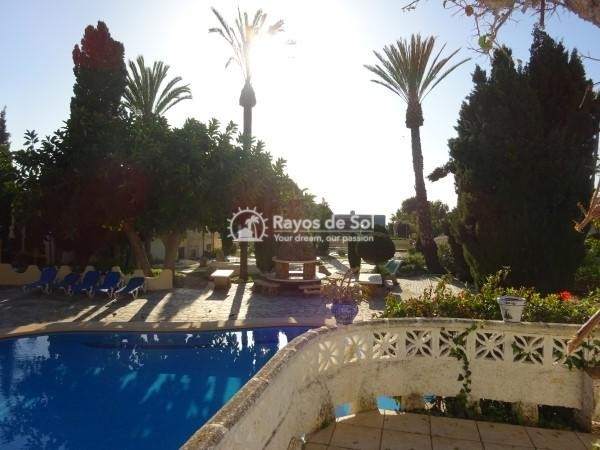 Apartment  in Calpe, Costa Blanca North (2894) - 12