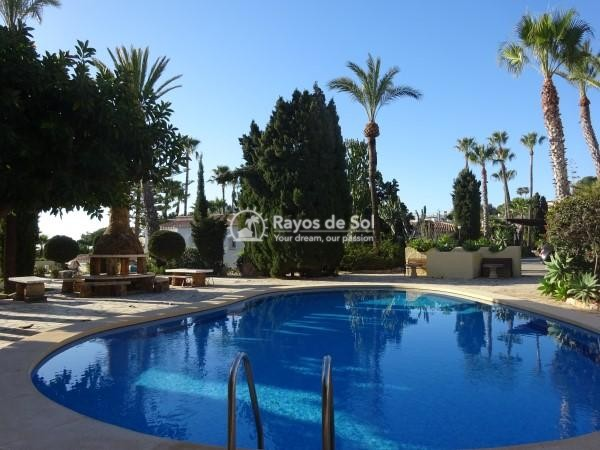 Apartment  in Calpe, Costa Blanca North (2894) - 5