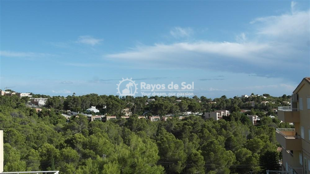 Apartment  in Altea, Costa Blanca (2814) - 13