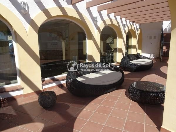 Apartment  in Calpe, Costa Blanca North (2742) - 20