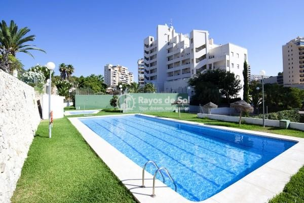 Apartment  in Calpe, Costa Blanca North (2677) - 2