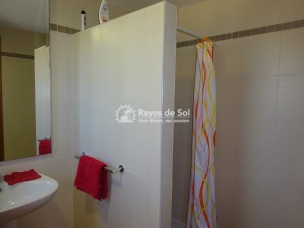 Apartment  in Calpe, Costa Blanca North (2519) - 8