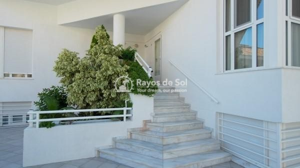 Apartment  in Altea, Costa Blanca (2340) - 48