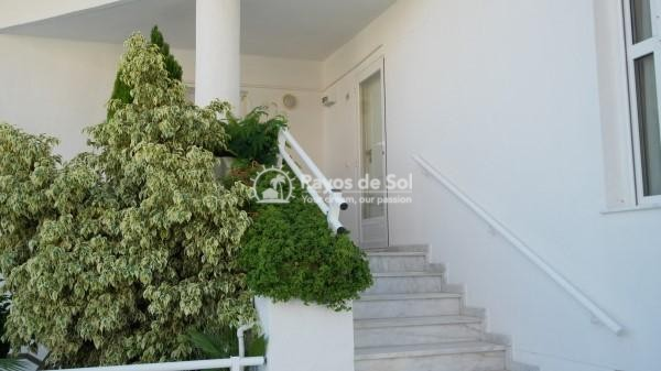 Apartment  in Altea, Costa Blanca (2340) - 46
