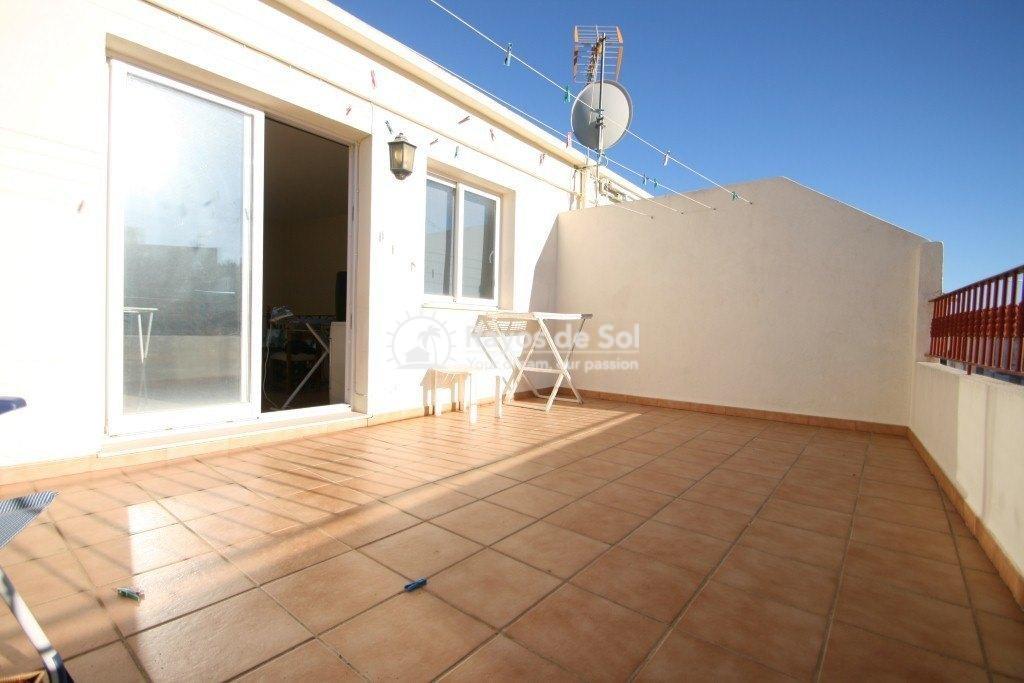 House  in Senija, Costa Blanca (2931) - 13