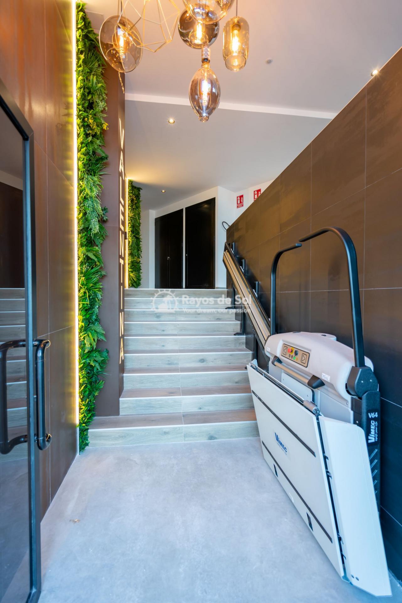 Apartment  in Formentera del Segura, Costa Blanca (Valentina-2d) - 7