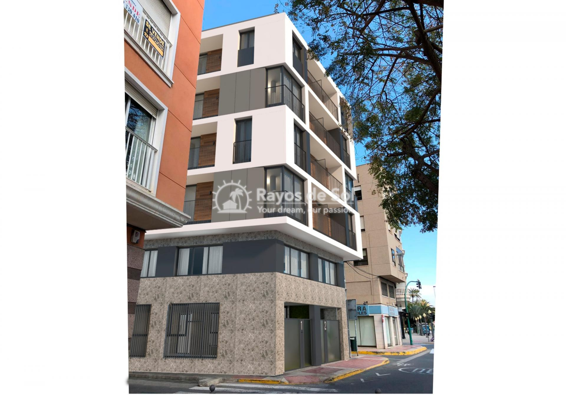 Apartment  in Elche, Costa Blanca (Vincente-Serrano-1d) - 6