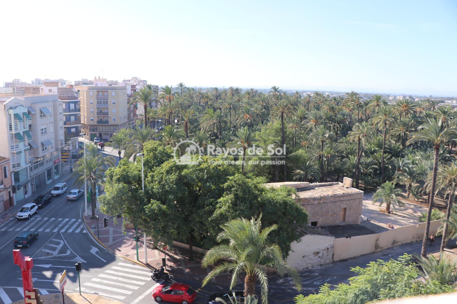 Apartment  in Elche, Costa Blanca (Vincente-Serrano-1d) - 8