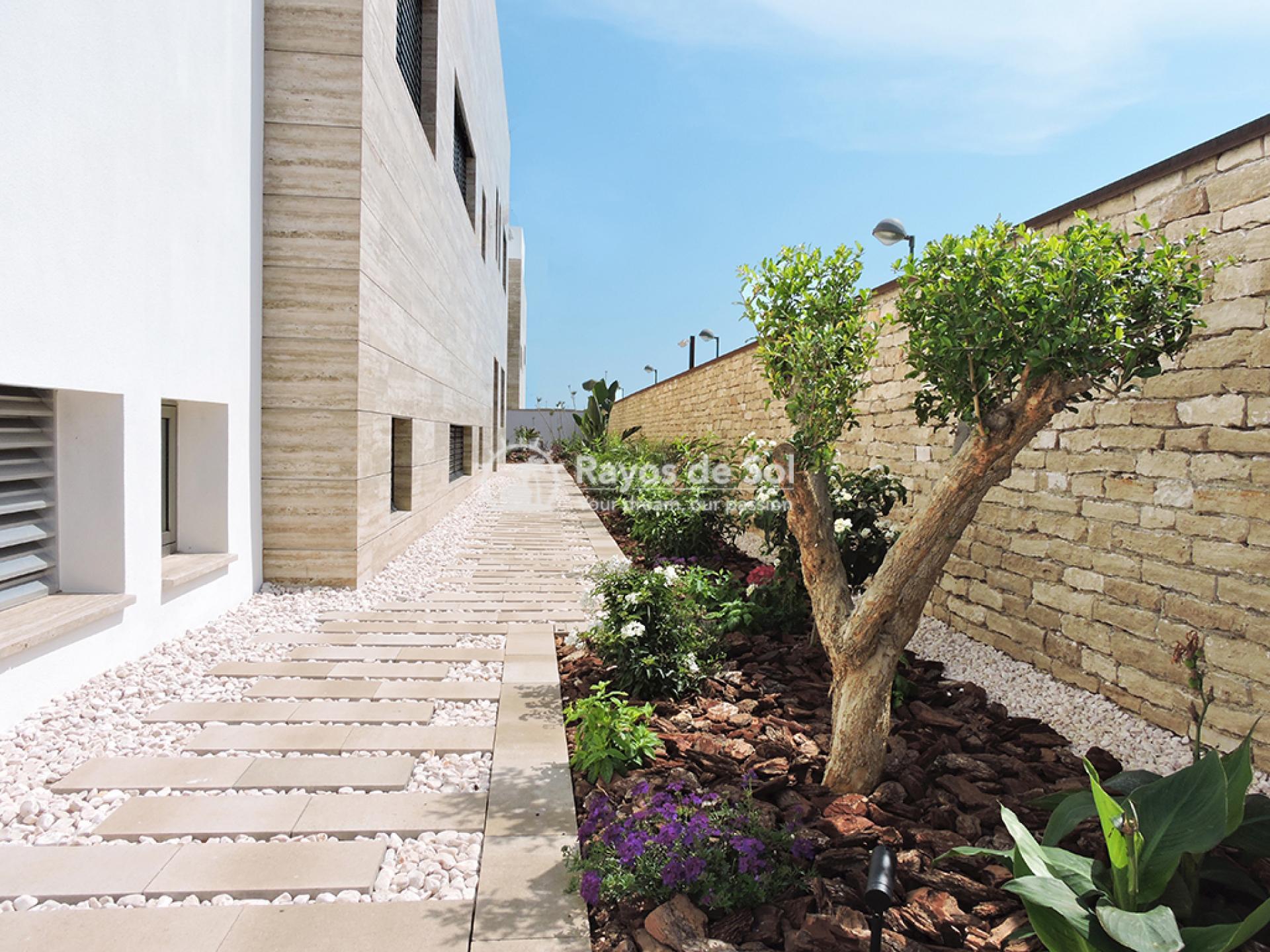 Luxury beachfront villa  in Torre de la Horadada, Pilar de la Horadada, Costa Blanca (Dunas-del-mar-5) - 11