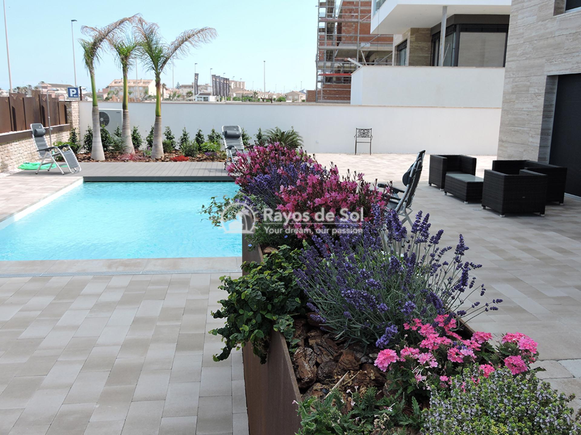 Luxury beachfront villa  in Torre de la Horadada, Pilar de la Horadada, Costa Blanca (Dunas-del-mar-5) - 15