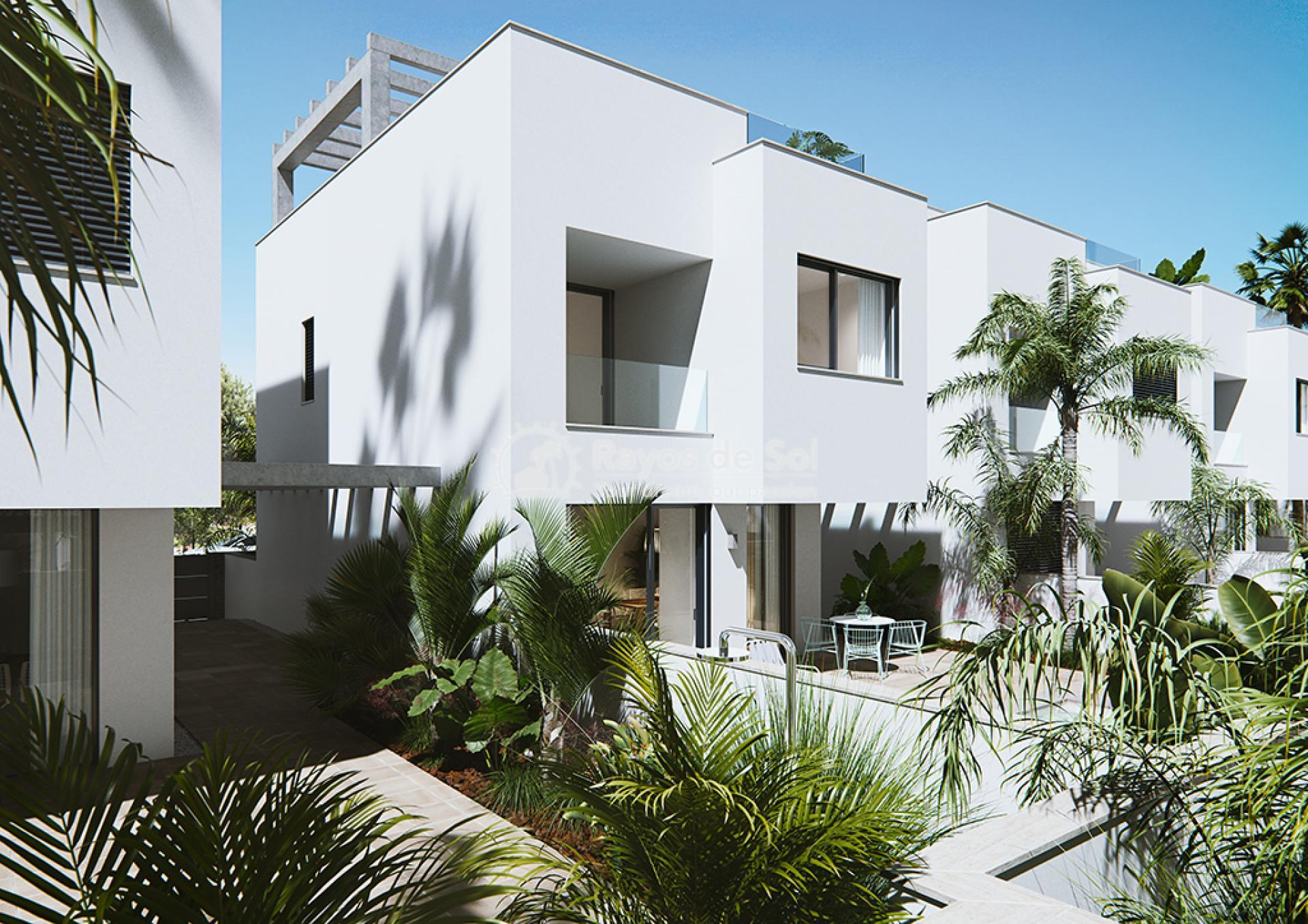 Luxury beachfront villas  in Torre de la Horadada, Pilar de la Horadada, Costa Blanca (Las-Higuericas-v12) - 7